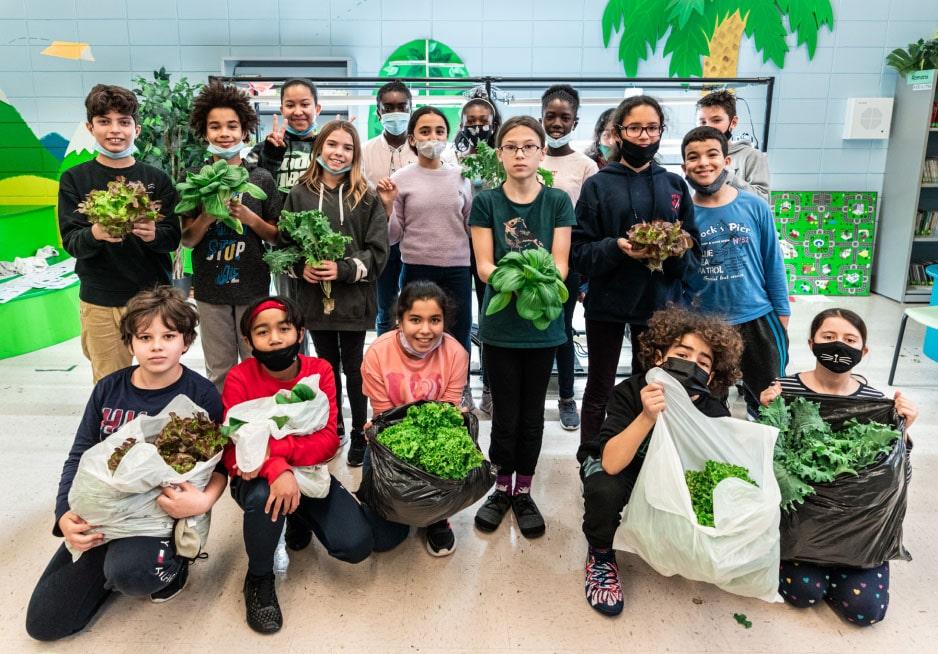 vireo harvest children