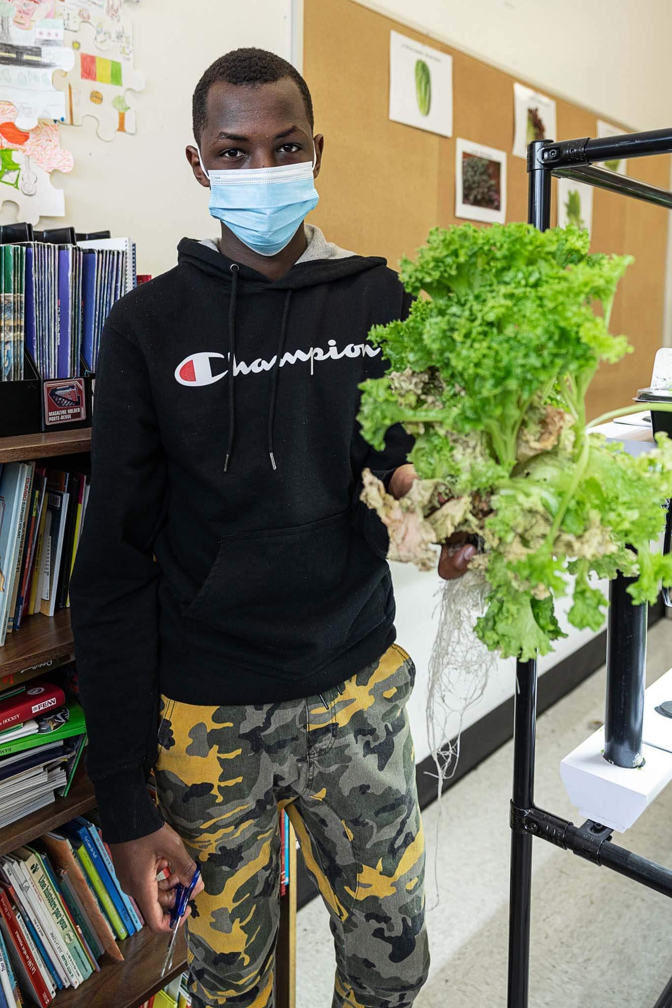 vireo kid happy harvest salad